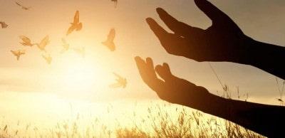 21 Дневна програма на благодарността